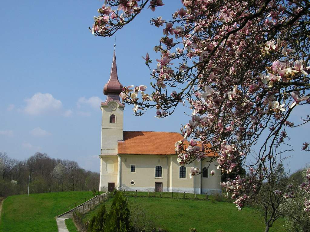 Crkva sv. Mihaela Miholjanec-fotogalerija