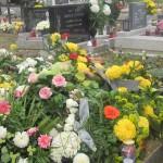 groblje 032