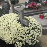 groblje 034