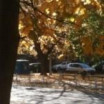 jesen 3