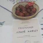 Druga nagrada Kokor Marici