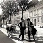 KRAVICA V DRAŠKOVIČEVOJ 1920